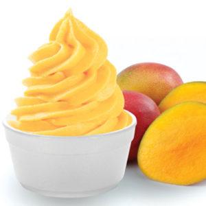 Mango Fro Yo - Cafe Choco Craze